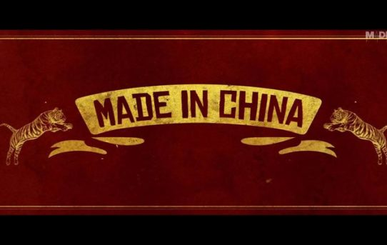 Made In China - 2019 Bollywood Movie Poster