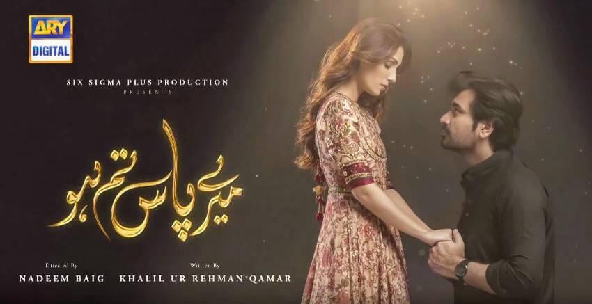Mere Paas Tum Ho - 2019 Pakistani Drama