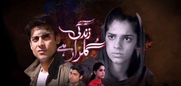 Zindagi Gulzar Hai on Netflix