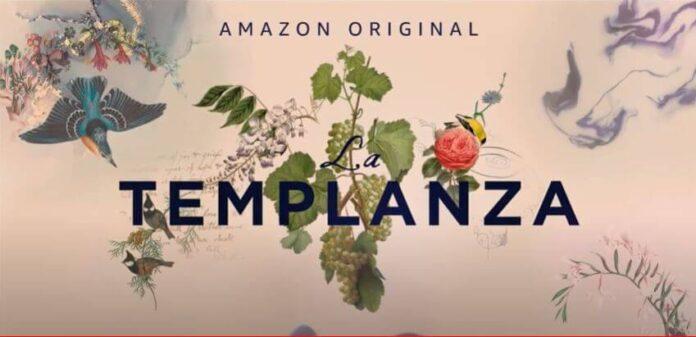 The Vineyard - An Amazon Original 2021 TV Series